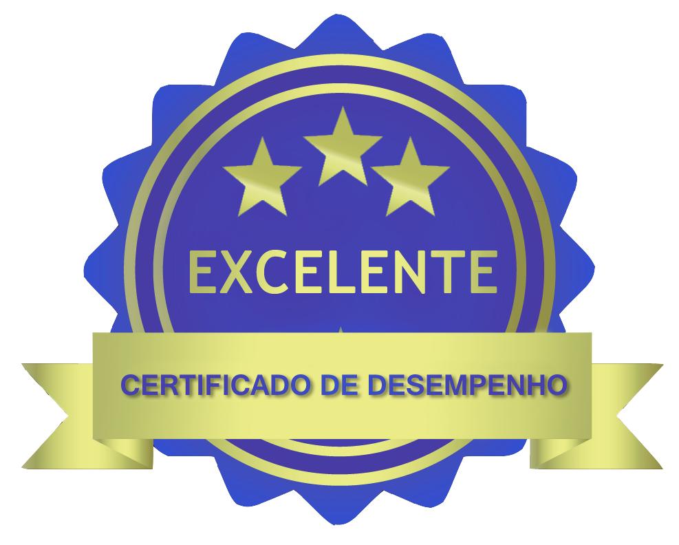 Certificado de desempenho da página